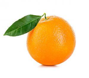 научен опит с portokal